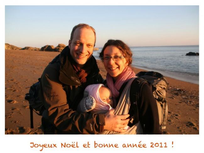 2011_Bonne_Annee